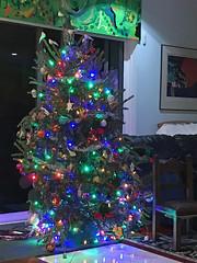 Christmas Tree (soniaadammurray - Off) Tags: digitalphotography tree christmas lights home reflections celebration treemendoustuesdays