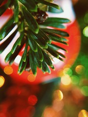 Christmas Pokébauble (nickcozier) Tags: christmas holidays festive olloclip barbados tropics caribbean macro close up