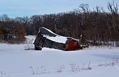 I Think It's a Goner (LouLou'sLoves) Tags: outside outdoors barn sinking red snow winter zimmerman mn