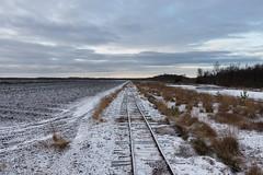 Himmelmoor Tracks (spookyrod) Tags: snow ice quickborn himmelmoor moor moorland peat extraction train tracks trees clouds germany schleswig holstein