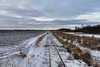 Himmelmoor Tracks (spookyrod) Tags: snow ice quickborn himmelmoor moor moorland peat extraction train tracks trees clouds germany schleswig holstein