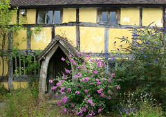 A cottage in Eardisland, Herefordshire, England (Hunky Punk) Tags: bush house architecture building cottage half timbered yellow eardisland herefordshire england uk gb