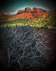 Bones (D'ArcyG) Tags: sedona mountain cathedralrock redrocks desert deadtree abstract surreal impression southwest arizona