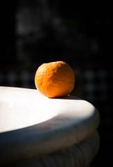 Sevilla Orange (Raggedjack1) Tags: fountain sevilla citrusfruit fruit orangefruit seville orange murillogardens