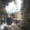 Rolling into the spring. (Bokehm0n) Tags: landscape nature vsco explore flickr earth travel folk 500px railway train engine steam transportation system track vehicle buggy snow winter tree no person wagon carriage road smoke nostalgia spring