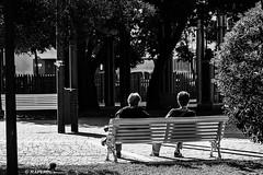 Al sol mañanero (raperol) Tags: parque airelibre street calle blancoynegro bn