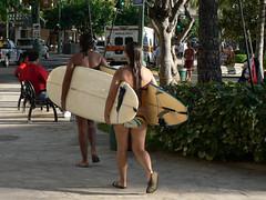 Surfboard Sandwich Wikiki