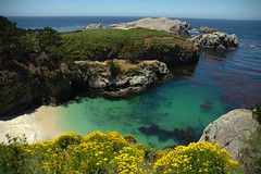 China Cove, Point Lobos, California (Thad Roan - Bridgepix) Tags: ocean california beach ilovenature monterey sand rocks cove highway1 pacificocean carmel montereycounty pointlobos pacificcoasthighway pointlobosstatereserve 200606