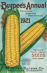 burpee's seed catalog