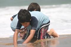 IMG_5651 (mama2my3boyz) Tags: beach assateague