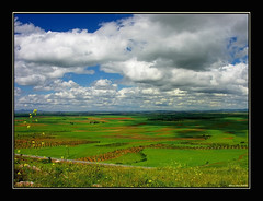 Coming from the shadows land (alonsodr) Tags: verde green clouds landscape reina topf50 nikon searchthebest quality paisaje badajoz 500v50f nubes alonso extremadura alonsodr specnature