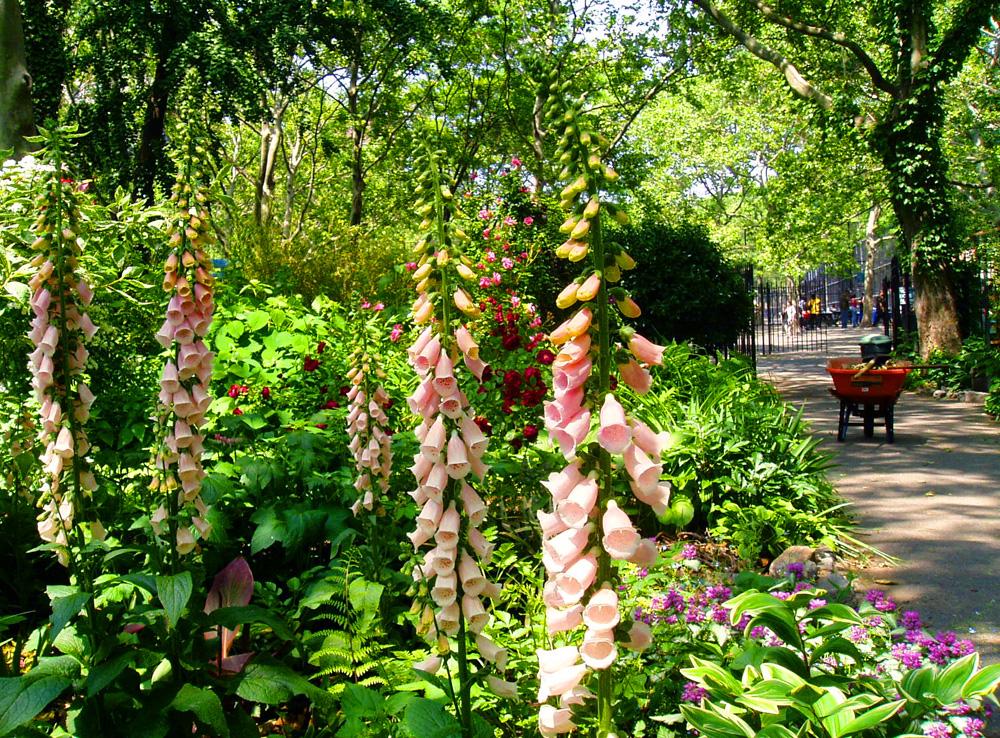 Sara Delano Roosevelt Garden