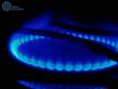 é fogo! (alineioavasso™) Tags: blue azul fire fogo