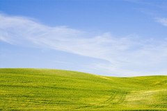 Green and Blue (bentilden) Tags: blue sky usa color green field pentax idaho palouse istdl