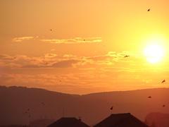 Transylvania Sunrise in Romania (Brian A Petersen) Tags: sun mountains birds clouds sunrise worship europe village background brian hills romania bp transylvania missions roumanie petersen sibiu romnia hermanstadt nagyszeben bpbp brianpetersen brianapetersen