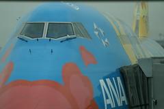 """ANA B747-481D (JA8956 """"OHANA Jumbo"""") @ HND/RJTT (Hyougushi) Tags: japan airplane tokyo ana airport   boeing pokmon haneda b747 tyo hnd    rjtt ja8956"""