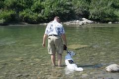 Not...Wanting...to...be...Wet... (stacynowicki) Tags: dog canada calgary swimming alberta canon350d sasha