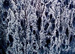 Raindust (Dru!) Tags: abstract macro art texture window wet lines rain tears pattern mud image tracks surreal dry roadtrip sediment clay swirls splash dust streaks ghostly depth silt fines oddandabstract semifractal roaddust