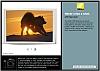 Nikon D80 -- Discover Your Potential
