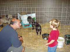 2006 08 August 22 Portage County Randolph Fair_Zane and Dante Check Out Goats (sbosshart) Tags: county august 2006 portage randolphfair