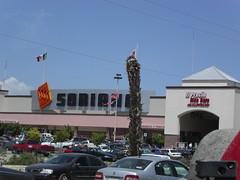 Soriana (John Markos O'Neill) Tags: california mexico bajacalifornia baja sanjosedelcabo soriana
