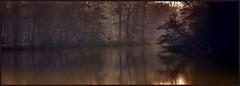 The River of Dreams - Billy Joel (Janusz Kudlak) Tags: ilovemywife agnieszka myniu pastuch sony best alpha100 tree outdoor love mist fog charlie'sgrouplevel1 charliesgrouplevel2 charliesgrouplevel3 charliesgrouplevel4 charliesgrouplevel5 charliesgrouplevel6 charliesgrouplevel7 charlie'sgrouphalloffame charlie'sgroupbronzelevel charliesgroupsilvermemberaward charliesgroupgoldmemberaward greatphotographers charlie'sgrouphonorroll autofocus extraordinarilyimpressive