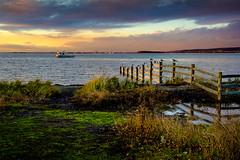 Evening at Blackie Spit (rdpe50) Tags: landscape textures colours light evening fence ocean boat seagulls blackiespit surrey bc