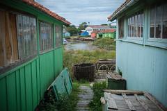 Huts on Ile D'Oleron (.mushi_king) Tags: vacation holiday france huts seafood marshes iledoleron charentmaritime