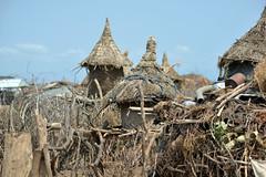 Dassanech Tribe (gabitul) Tags: travel valley tribes omovalley ethiopia tribe omo dassanech africatribes dassanechtribe gabitul ethiopiadassanech dassanech2omo