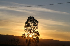 game over (Rodrigo Alceu Dispor) Tags: sunset sky cloud sun mountain game tree wire over line
