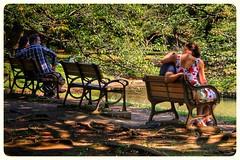 Couples (dpjrugby) Tags: park people japan bench tokyo yoyogipark yoyogikoen