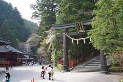 Nikko Futarasan Shrine (Iyhon Chiu) Tags: trees japan japanese shrine traditional d750  nikko torii  tochigi   2015   futarasanjinja tochigiprefecture  futarasanshrine