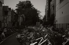 GXR-0016227 (Swampydog) Tags: street bw monochrome japan tokyo shibuya mount ricoh a12 gxr leitz elmar35