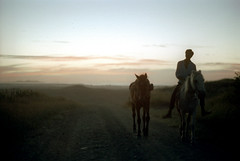 29-475 (ndpa / s. lundeen, archivist) Tags: road sunset sky horses people horse man color film silhouette fiji clouds rural 35mm landscape evening dusk interior nick silhouettes southpacific dirtroad 29 1970s 1972 rider ontheroad horseback youngman horsebackriding dewolf oceania localpeople fijian pacificislands horsebackrider southpacificislands nickdewolf photographbynickdewolf reel29 northfiji