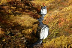 Hausti (oeiriks) Tags: autumn waterfall iceland oeiriks sonyalpha350 blskgabygg