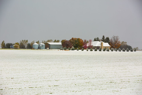 "Fall Colours - Farm & Snow • <a style=""font-size:0.8em;"" href=""http://www.flickr.com/photos/65051383@N05/22302605141/"" target=""_blank"">View on Flickr</a>"