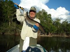 Amazonia 2012 (15)