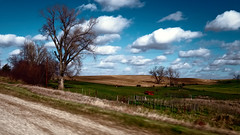 Down the Back Roads (Pete Zarria) Tags: field farm scenic iowa land grantwood bountiful fecund