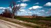 Down the Back Roads (I. M. Pist) Tags: field farm scenic iowa land grantwood bountiful fecund