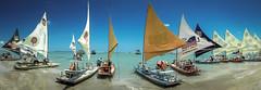 Beach life / Porto de Galinhas / Ipojuca / PE / Brazil (marcelo.guerra.fotos) Tags: travel brazil costa praia brasil photography boat mar photo scenery paisagem pe pernambuco portodegalinhas