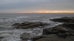 Whitely Bay