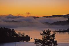 natur fog (Leifskandsen) Tags: camera trees red sea nature norway fog canon bay coast living heaven scandinavia brum sandvika leifskandsen skandsenimages
