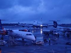 PB010938 (eakspeasy) Tags: sea boeing 747 qx livery q400 speedbird ksea boisestate horizonair qxe n437qx