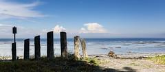 Defense #happyfencefriday (Note-ables by Lynn) Tags: sea beach fence landscape coast sand quebec outdoor shoreline shore hff happyfencefriday bicpark