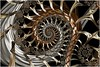 Cold Fusion (Ross Hilbert) Tags: fractalsciencekit fractalgenerator fractalsoftware fractalapplication fractalart algorithmicart generativeart computerart mathart digitalart abstractart fractal chaos art mandelbrotset juliaset mandelbrot julia orbittrap metal sculpture spiral fusion