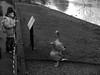 Ducks in St James Park (semantixx1) Tags: ducks stjamespark centrallondon park londonpark