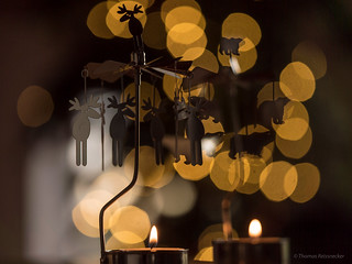 Moose, polarbears, candles and christmas tree