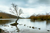 A Sprinkling of Snow (andrewjd44) Tags: wales snowdonia landscape tree mountainrange nationalpark reflections llanberis mountain snow northwales cymru