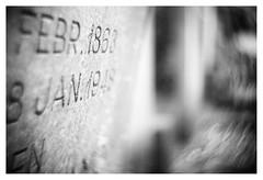 Scenes from the cemetery _ 3 (leo.roos) Tags: swirly swirlybokeh headstone tombstone grave graf gravestone grafsteen begraafplaats cemetery kerkhof churchyard graveyard monster westland cmount taylortaylorandhobson cookekinic1inchf15 cinelens movie nex nex6 dayprime day25 dayprime2017 dyxum challenge prime primes lens lenses lenzen brandpuntsafstand focallength fl darosa leoroos