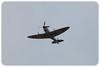 Supermarine Spitfire Mk VIII Landing (Property of Aviation Museum) (A58-758/VH-HET) (Craig Jewell Photography) Tags: a58758 mkviii supermarinespitfire supermarinespitfiremkviii vhhet aeroplane airshow airforce airplane australia base defenceforce military newcastle nsw plane raaf rollsroyce spitfire williamtown ¹⁄₁₀₀₀sec f63 ‒⅓ev canoneos5dmarkii iso100 20100919153303mg2181cr2 craigjewell